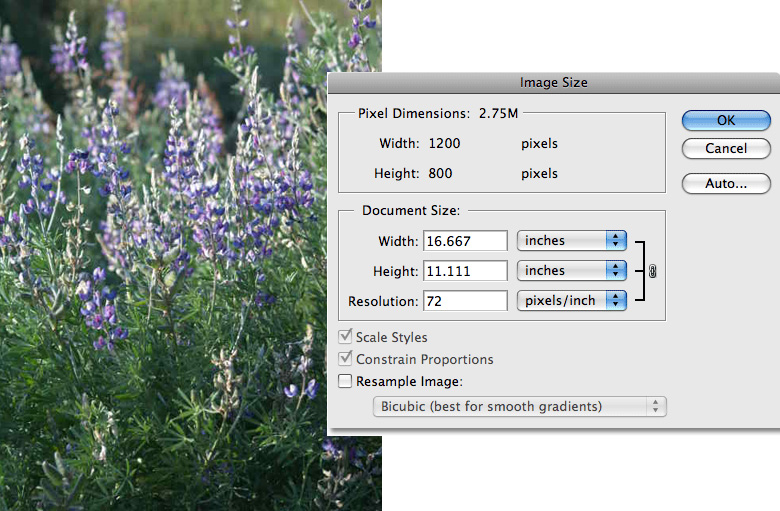 how to change image dpi in photoshop